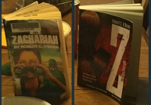 z for zachariah covers
